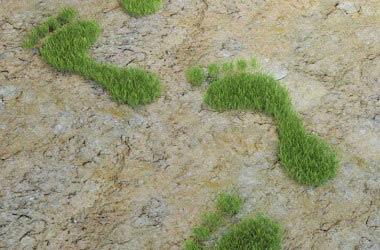 Come realizzare uno studio di impatto ambientale