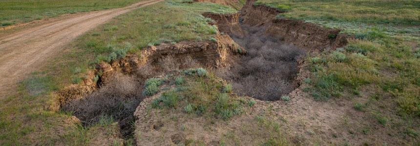 linee guida classificazione del rischio sismico delle costruzioni