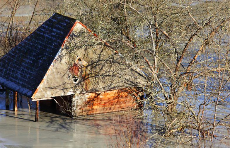 Di che cosa si occupa il Disaster Manager previsto dalle norme UNI?