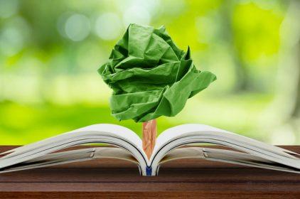 Procedura per la Valutazione Impatto Ambientale: al via da oggi la riforma della procedura
