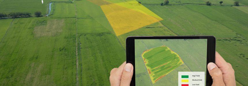Nuova proroga per la rivalutazione terreni 2018: indicazioni pratiche