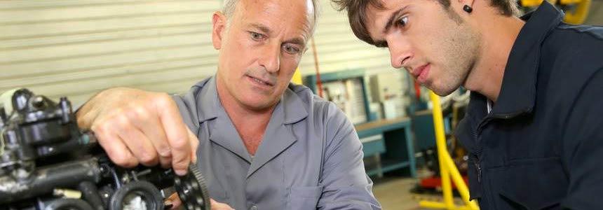 Le linee guida per la formazione professionale europea