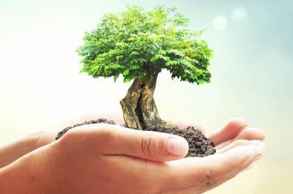 Come e quando scrivere una valutazione di incidenza ambientale?
