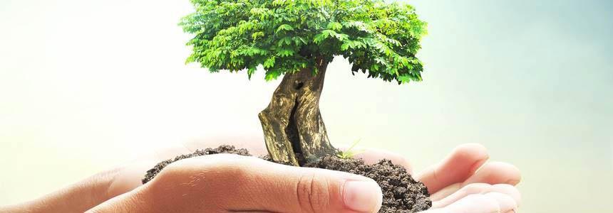 Valutazione di incidenza ambientale