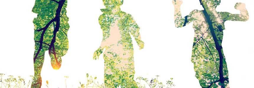 Collegato ambientale: tutti gli interventi di green economy