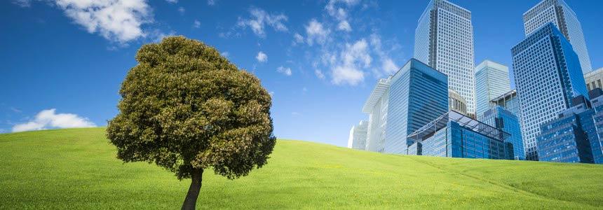 Ambiente ed Ediliza Ddl Consumo Suolo e Bando Periferie