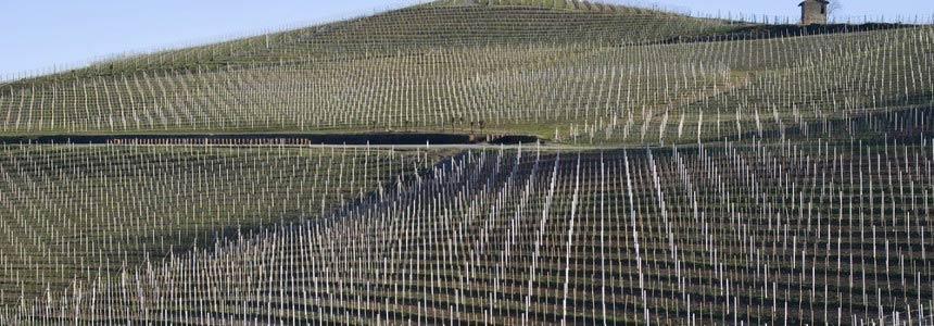 Decreto Legge Contenimento del Consumo del suolo e riuso del suolo edificato