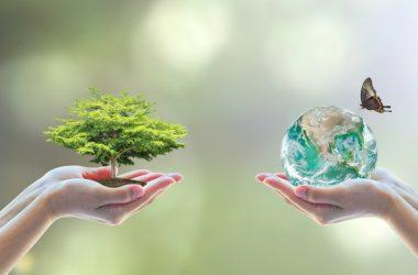 Riforma della valutazione impatto ambientale e dello studio di impatto ambientale: cosa cambia?