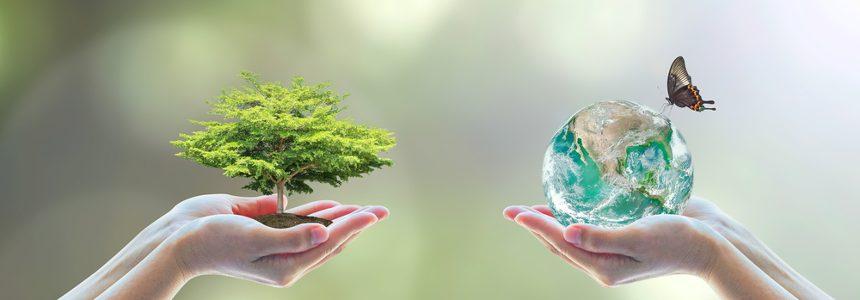 Valutazione Impatto Ambientale e Studio impatto ambientale: tutte le news