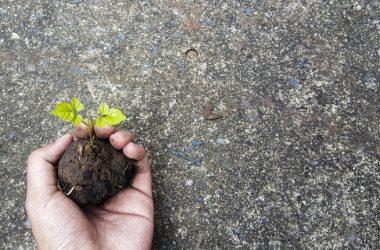 Brevetto ENEA per un cemento eco-sostenibile ad alto isolamento termico