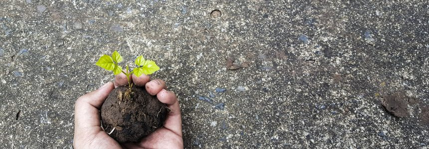 Cemento eco sostenibile ad alto isolamento termico ENEA