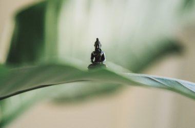 Bioedilizia: l'arte cinese del Feng shui, costruire case ecologiche attente ai bisogni di corpo e anima