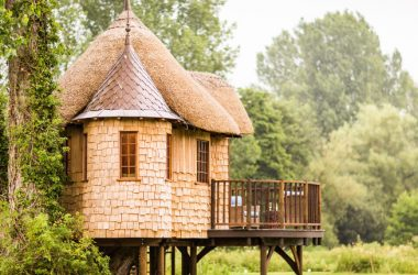 Arriva il Master in – Architettura delle costruzioni in legno –