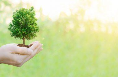 Riforma Ecobonus. CNA Installazione Impianti: si rischia il dimezzamento reale degli incentivi
