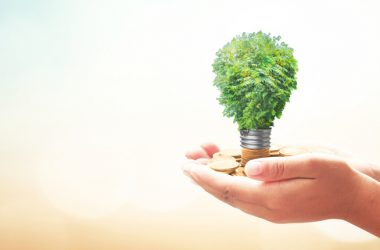 Proroga ecobonus nella Manovra 2019: il MEF risponde a una interrogazione