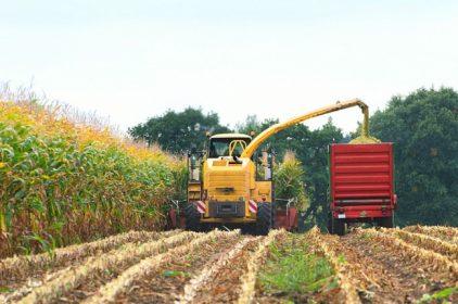 Gli ITS sono la risposta italiana alle necessità delle imprese di avere dei Super Tecnici