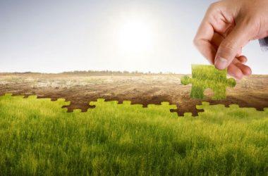 Criteri Ambientali Minimi per affidamento di servizi energetici per gli Edifici: Manuale Operativo SCARICA PDF