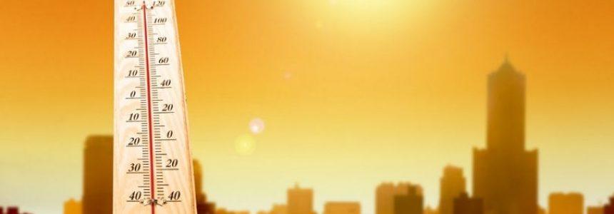 Effetto isola di calore urbana: SCARICA GRATIS le Linee Guida Ministeriali