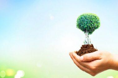 Sul nuovo Ecobonus la CGIA fa ricorso all'Antitrust