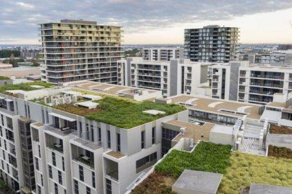 Ambiente. Nuove risorse per i tetti verdi e per la riqualificazione energetica degli edifici privati
