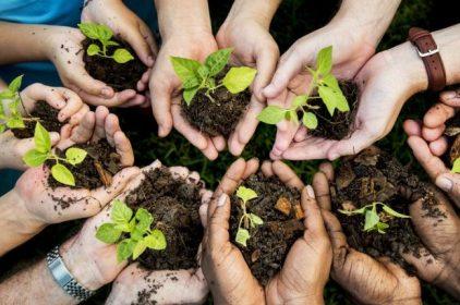 Cos'è la Valutazione Ambientale Strategica (VAS) e quali sono i programmi ai quali viene applicata?
