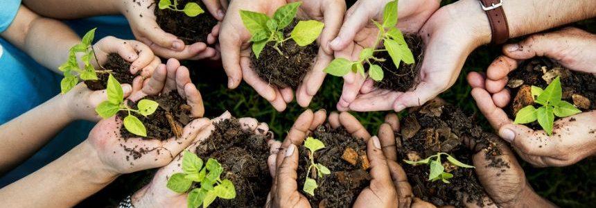 Che cosa è la Valutazione Ambientale Strategica (VAS)?