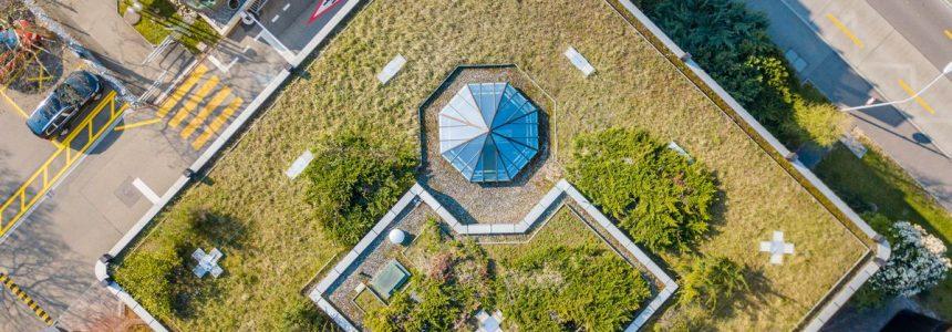 tetto-verde-prato