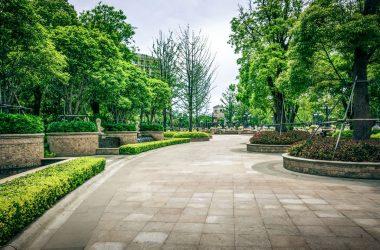 Manutenzione del verde urbano: quali sono i servizi?